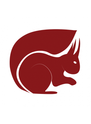 Westmoorland Red Squirrels logo