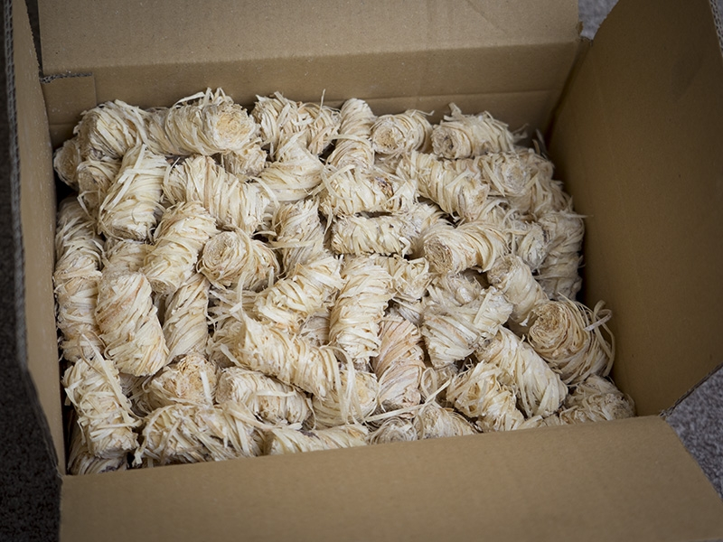 Bulk Box Of Wood Wool Eco Firelighters Completely Natural