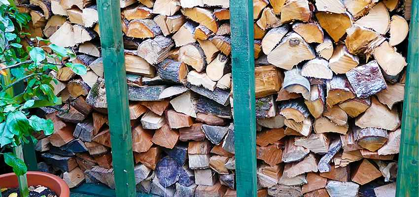 Build your own custom log store or get logs direct to build one for you
