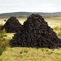 Yorganics is a great alternative to peat based compost