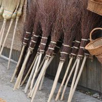 Birch has a natural antiseptic used for brooms.